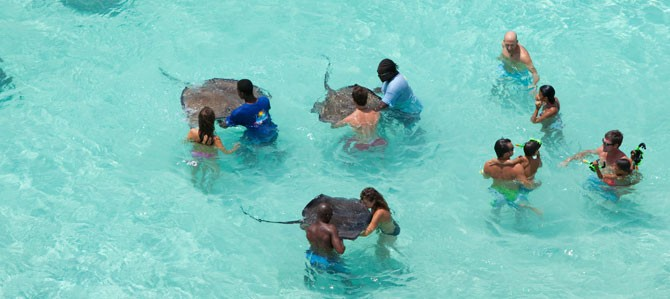 Stingray City, Grand Cayman Islands